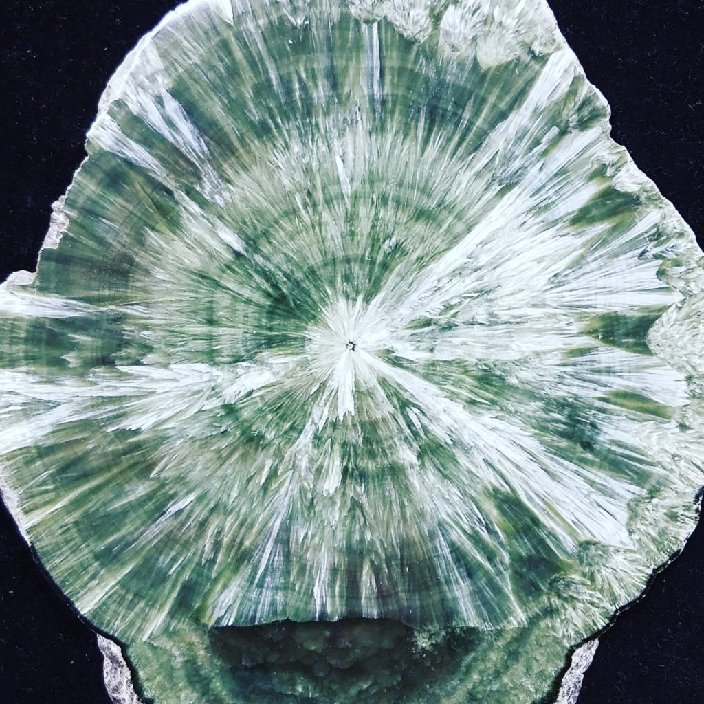 Seraphinite crystal in Naples FL at Altered Elements Store.