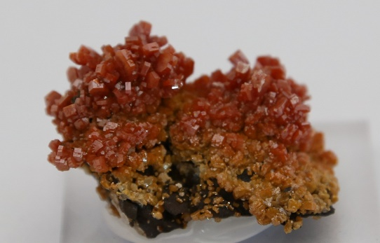 Vanadinite mineral crystals in Naples FL at Altered Elements Store.
